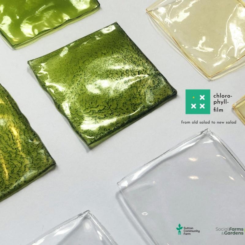 Chlorophyll – film
